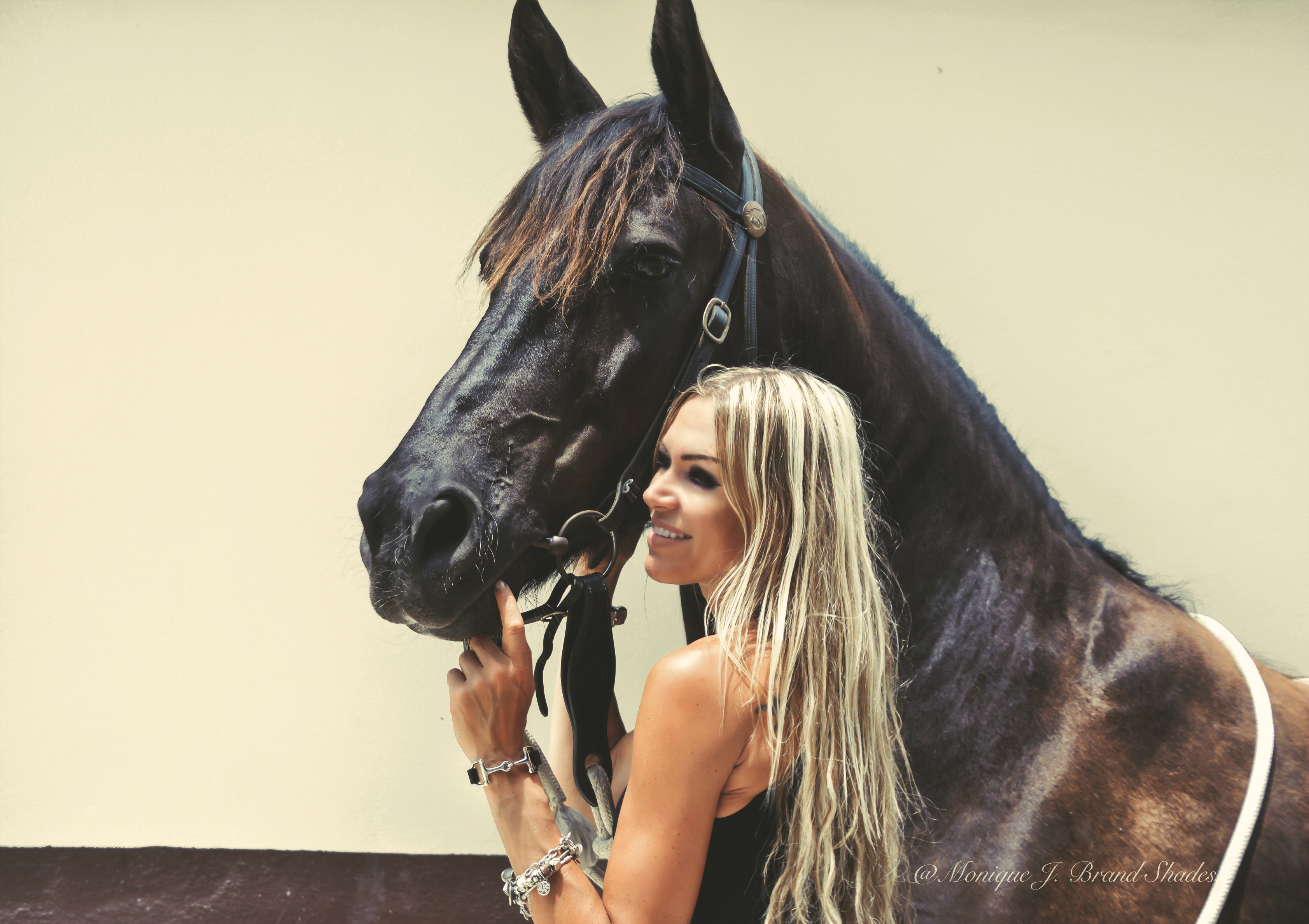 equestriangypsy and friesian